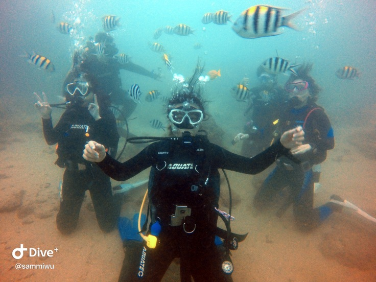 drifters diving club diving scuba diving in kenting Taiwan female dive instructor open water course discover scuba having fun underwater sea turtle fish marine life